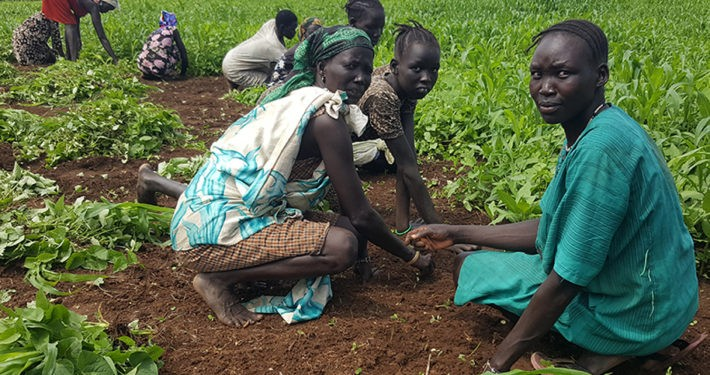 Vertriebene südsudanesische Bäuerinnen und Bauern Foto: ADRA Deutschland