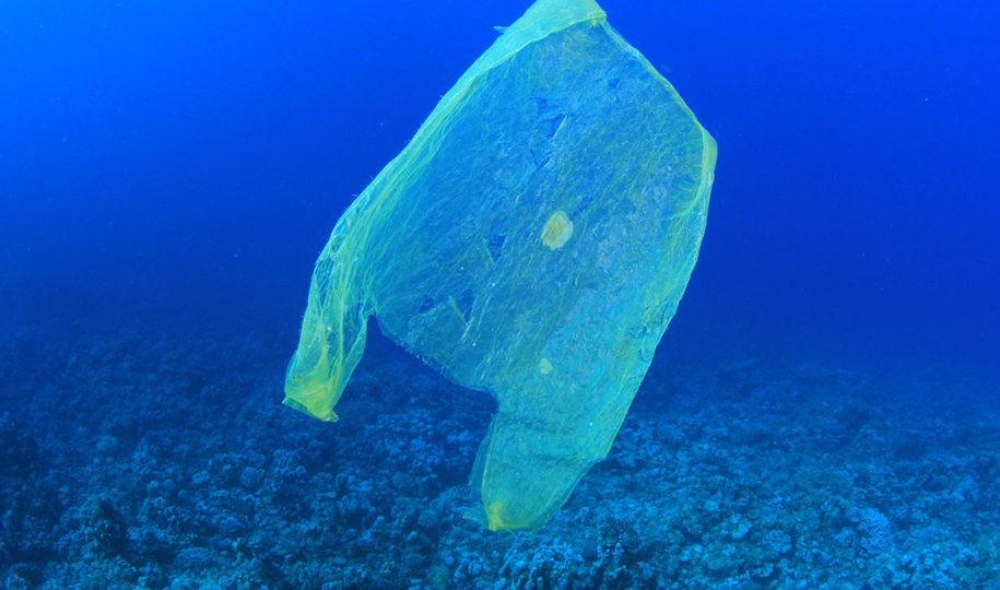 Eine Plastiktüte schwimmt im Meer. 13 Millionen Tonnen Plastikmüll kommen jährlich hinzu. Ein Plastiktütenverbot soll helfen. _© MichaelisScientists