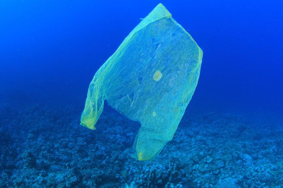 Eine Plastiktüte schwimmt im Meer. 13 Millionen Tonnen Plastikmüll kommen jährlich hinzu. Ein Plastiktütenverbot soll helfen. Foto: MichaelisScientists