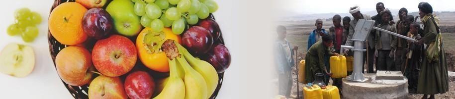 fruiton unterstützt GEMEINSAM FÜR AFRIKA und fördert somit Trinkwasserprojekte