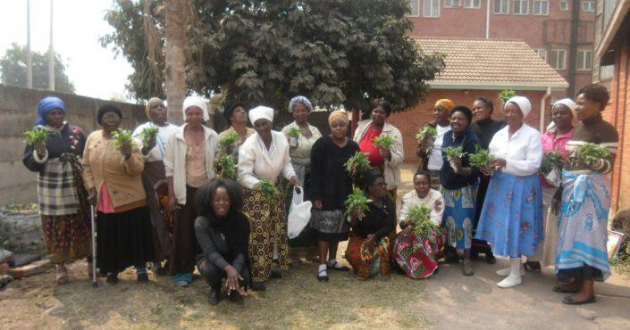 Simbabwe: Frauen stärken gegen Diskriminierung© Aktionsgemeinschaft Solidarische Welt e.V.
