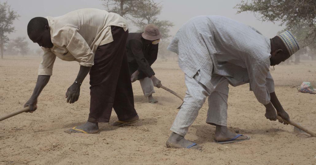 Bauern in der Sahelzone_©CARE