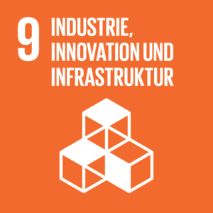 SDG Icon 9