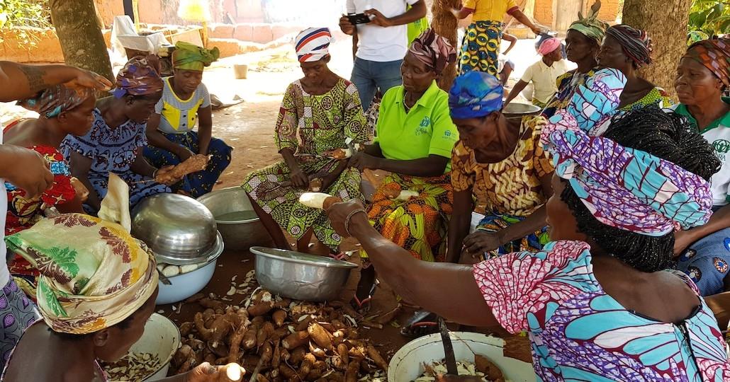 Togo: Ökologische Landwirtschaft_© ADRA