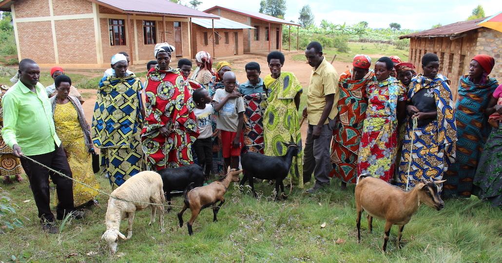Ziegenzucht in Burundi © ora Kinderhilfe